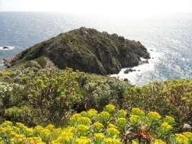 Cap Lardier