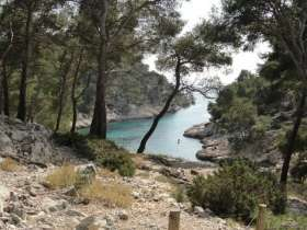 Calanques_Port_Pin_1