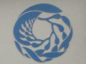 Monterey acquarium