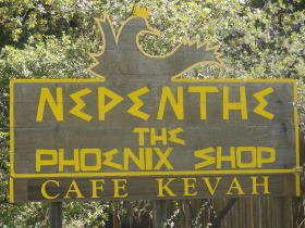 Nepenthe bar