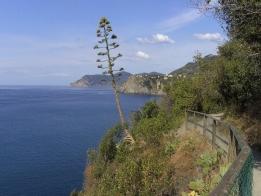 Sentiero Azzuro - Cinque Terre