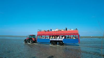 Tractorbus Mandø