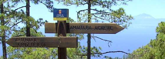 Wandeling Artenara - Agaete