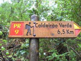 Wandeling Caldeirao Verde