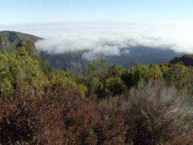 Wandeling boven de wolken