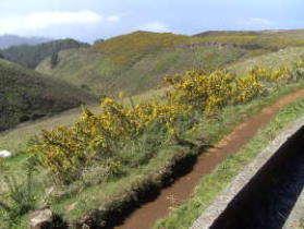 Levadawandeling Madeira