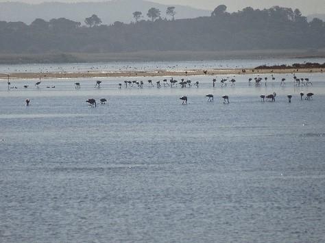 Lagoa Santo Andre
