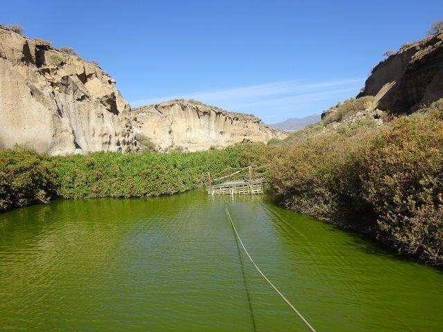Reserva San Blas
